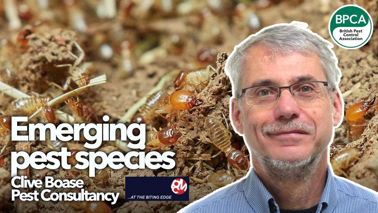 New and emerging UK pest species