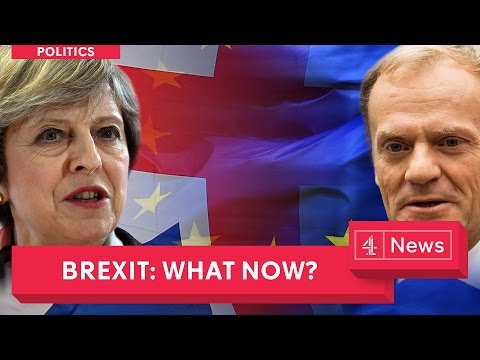 Brexit Explained - An Article 50 special as Theresa May pulls the trigger on EU membership