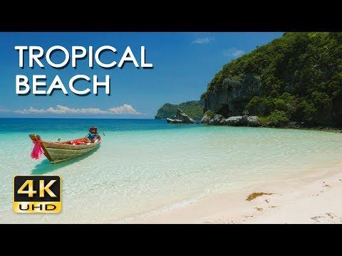 4K Tropical Beach - Relaxing Sea/ Ocean Wave Sounds & Ultra HD Nature Video - Meditate/ Yoga/ Sleep