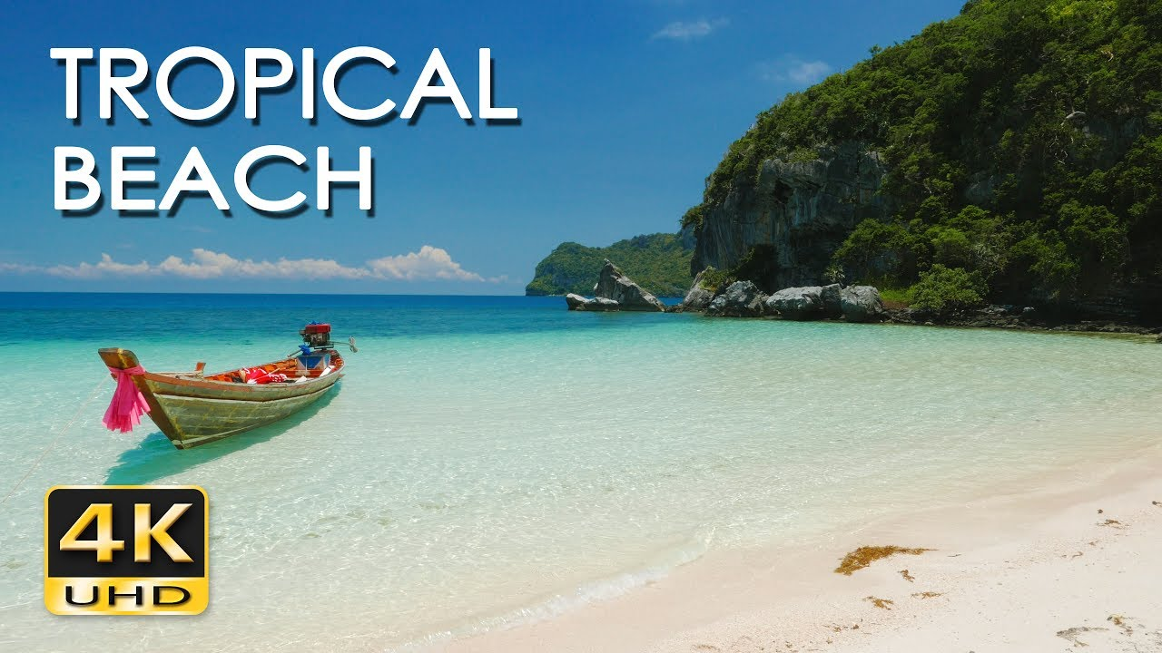Tropical Island Beach Ambience Sound: Relaxing Sea/ Ocean Wave Sounds