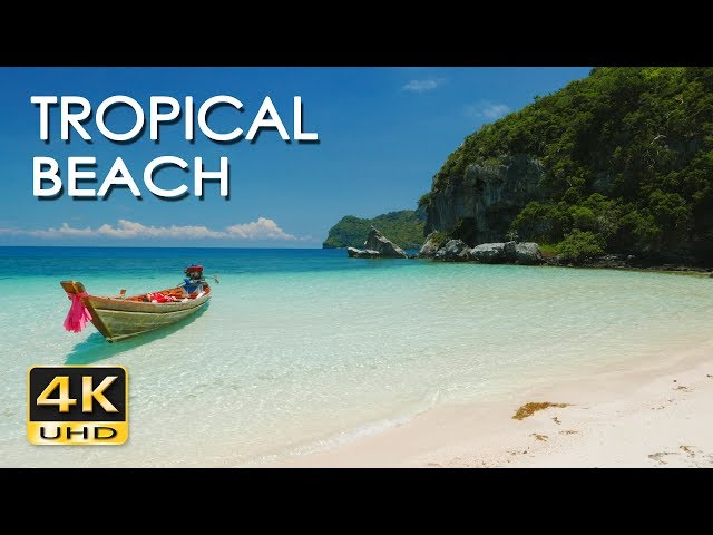 Tropical Island Beach Ambience Sound: Ocean Tropic Video Watch HD Videos Online Without Registration