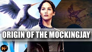Origin of the Mockingjay & its Deeper Meaning in the Series (Hunger Games Explained)