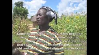 Contract Farming in Zimbabwe