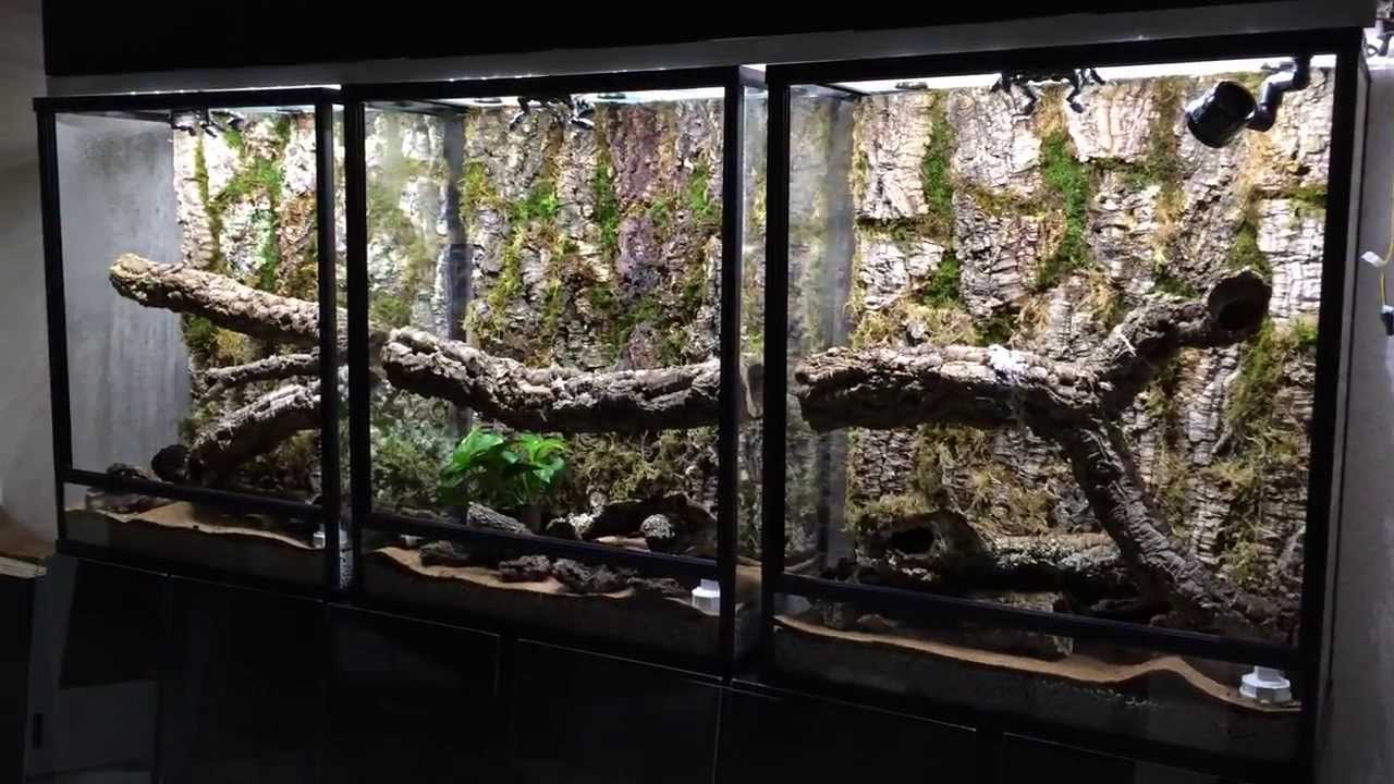 70 Gallon Trifecta Now With Cork Bark Youtube