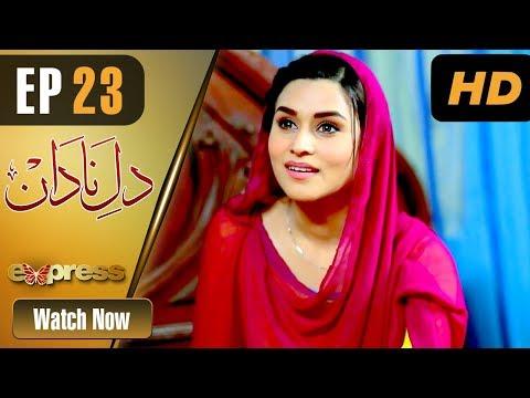 Dil E Nadaan - Episode 23 - Express Entertainment Dramas