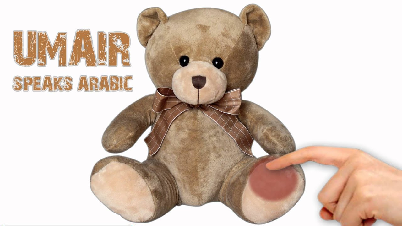 bear muslim personals Islamic marital practices such as dating young muslim men and women are strongly encouraged a marital wish hoping that the couple will bear many.