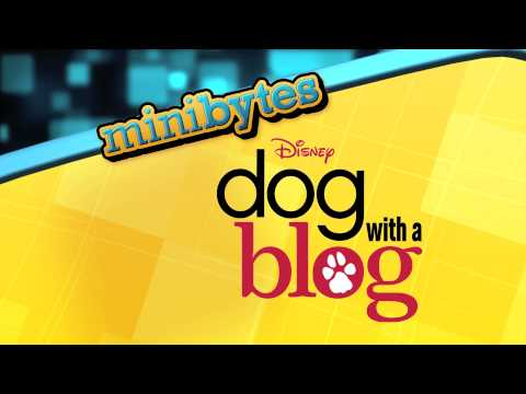 Dog With A Blog | Theme Song | Official Disney Channel UK