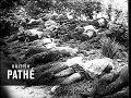 German Invasion Of Russia June 1941 1941 mp3
