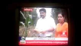 Drisya News, cultivation of maize crop ( Corn ) Jatton Jose ( Palai )