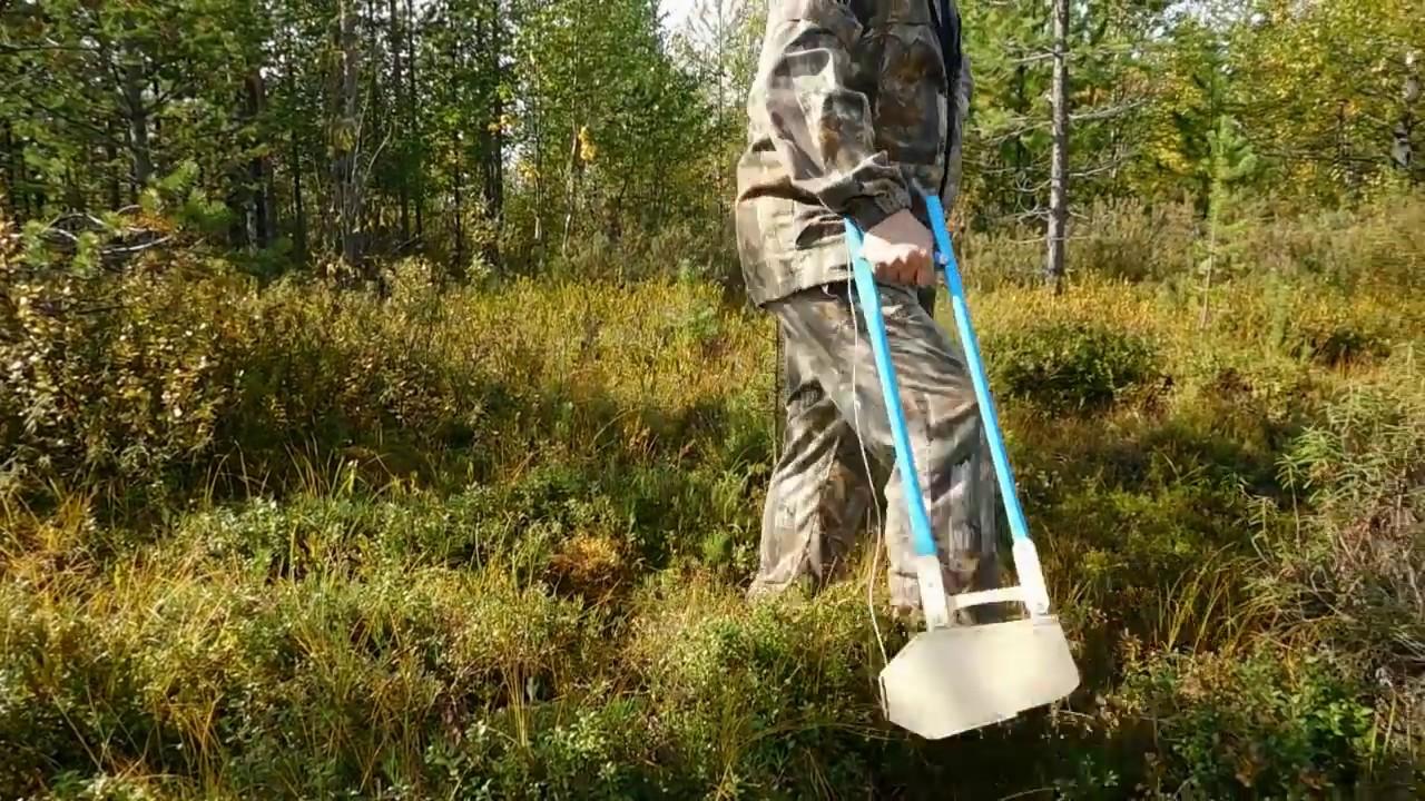 OXBO 9120 Ammacbel, Belarus, комбайн для уборки голубики и малины .