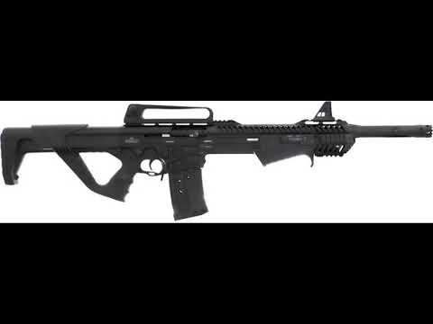 Download Firing My Dickinson Ermox XXPA 12Ga Semi-Auto/PumpShotgun For The 1st Time