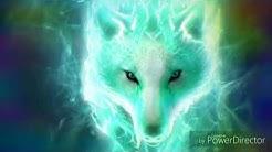 Schöne Wolfsbilder
