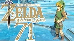 DAS GEWAND DER WILDNIS ( HELDENGEWAND ) | The Legend of Zelda: Breath of the Wild #71
