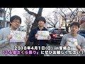2018年4月1日(日)『宮崎台ふる里さくら祭り』が行われます!