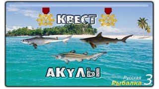 Русская рыбалка 3.99 Квест - Акулы (редкий вид).