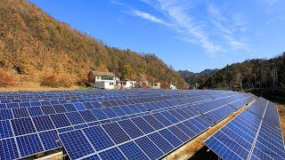 Should the World Fear China's Green Energy?