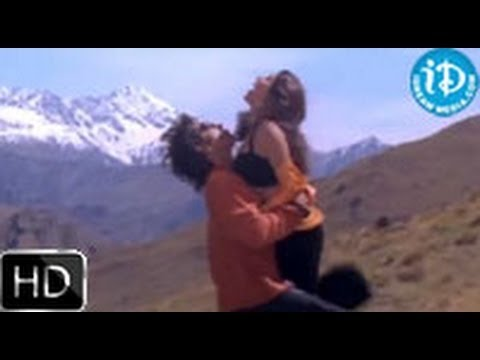 Aavida Maa Aavide Movie Songs - Hey Vastava Chhostava Song - Nagarjuna - Tabu - Heera