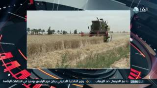 فيديو| برلماني: دفع متهمي «فساد القمح» غرامات لا يعفيهم من المسؤولية