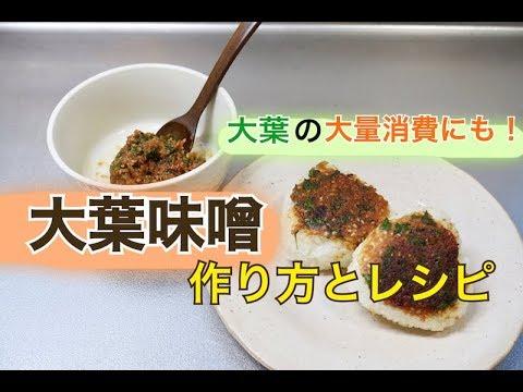 しそ 味噌 の 作り方