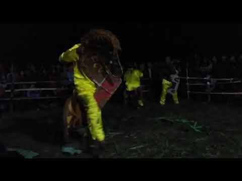 Kuda Lumping Manonjaya