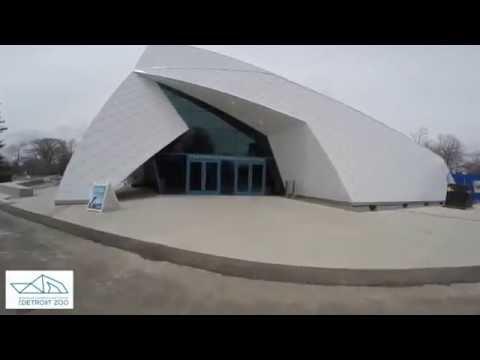 Detroit Zoo   Polk Penguin Conservation Center   Go Pro Tour