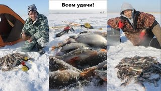 Зимняя рыбалка в Казахстане. Озеро Камбаш. С праздником, мужики!