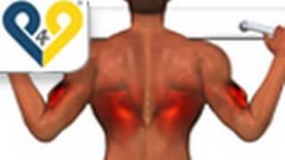 Tração na barra fixa ( Exercicios costas )