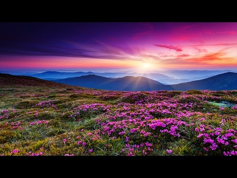 3 Hour Relaxing Sleep Music: Deep Sleep, Soft Music, Fall Asleep, Sleep Hypnosis ☾☆001