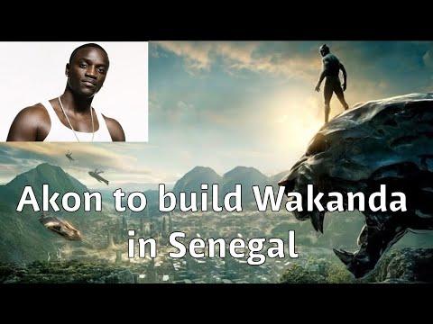 Akon to build crypto city in Senegal (Wakanda)... Goldman Sachs CEO supports Crypto