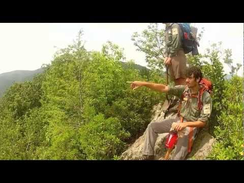 Rangers of the Linville Gorge