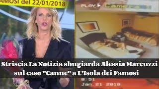 Striscia La Notizia sbugiarda Alessia Marcuzzi sul caso