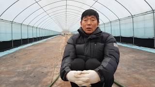 어려운농사 알고보면 소득놓은 농사를 지을수있다.
