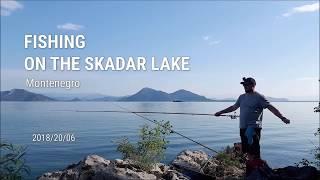 Summer fishing on Skadar Lake Montenegro