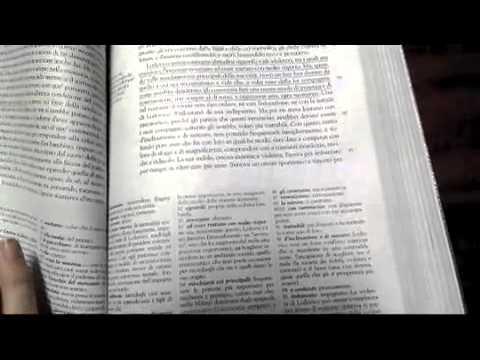 Capitolo 4 Promessi Sposi - Riassunto
