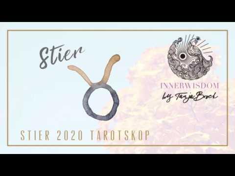 tarotskop-februar-2020-stiere:-beharrlichkeit-und-berührung-in-der-liebe