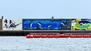 引田漁港 湾岸アート Higashikagawa Wangan art (Gulf art)