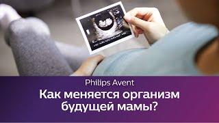 Изменения в организме женщины во время беременности и родов.