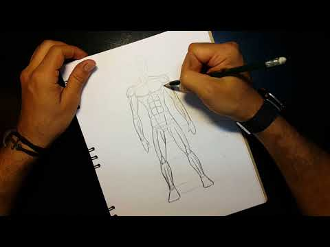 aprende-a-dibujar---músculos-del-cuerpo