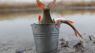 Открытие Сезона на поплавок 2020 От рыбалки не оторваться