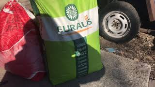 Семена подсолнечника EURALIS  ES BELLA иLG558 ЛГ5582 обзор