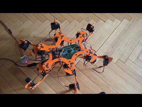 """Робот """"Паук"""" (Hexapod). Вводная часть."""