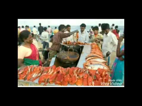 Chennai the capital city of Tamil Nadu.
