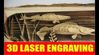 3D Laser Cutting and Engraving