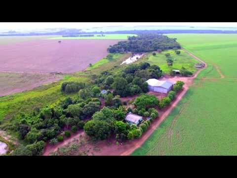 Fazenda Apio - Querência- MT 2015