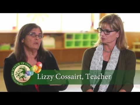 Montessori School of Ojai 40th Anniversary 2014 HD