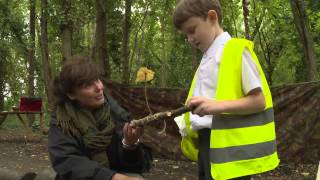 Woodland Adventure Forest School Harrow