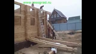 Строительство дома из профилированного бруса(Монтаж стен из профилированного бруса., 2010-09-17T17:15:47.000Z)