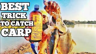 Best Carp bait Tricks  Plus Tips for using it  carp bait recipes and Tricks  How to catch carp