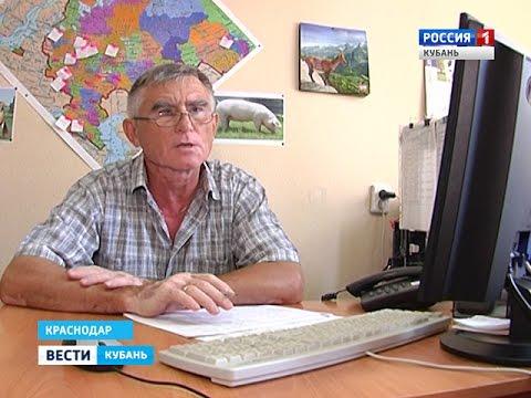 Объявления о продаже домашних и сельскохозяйственных животных в ставропольском крае на avito.