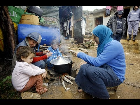 شغيل مليون سوري..تعرف على أضخم مشروع تديره الأمم المتحدة في دول الجوار - هنا سوريا  - نشر قبل 23 ساعة